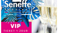 Seneffe Festival 2019 - Saturday VIP