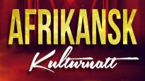 Afrikansk Kulturnatt med Adama Cissokho