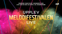 Melodifestivalen 2018 final - VIP