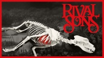 Rival Sons & Graveyard